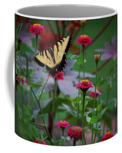 Butterfly Coffee Mug featuring the photograph Move On. by Robert Meanor