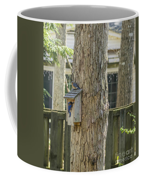 United States Coffee Mug featuring the photograph Moving In Day by Elvis Vaughn
