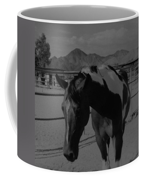Black And White Coffee Mug featuring the photograph Mr Ed In Black And White by Rob Hans
