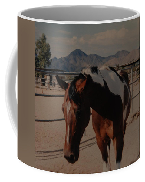 Horse Coffee Mug featuring the photograph Mr Ed by Rob Hans