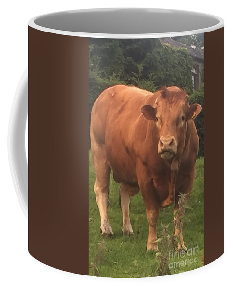 Bull Coffee Mug featuring the photograph Mr Whopper by Rebecca Snowball