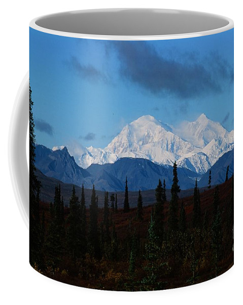 Mt Mckinley Coffee Mug featuring the photograph Denali by Ronnie Glover