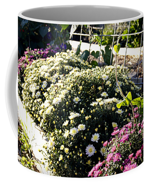 Mums Coffee Mug featuring the photograph Mum's The Word by Cricket Hackmann
