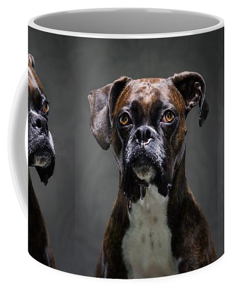 Dog Coffee Mug featuring the photograph Mutt Mugshot by Adrian Brown