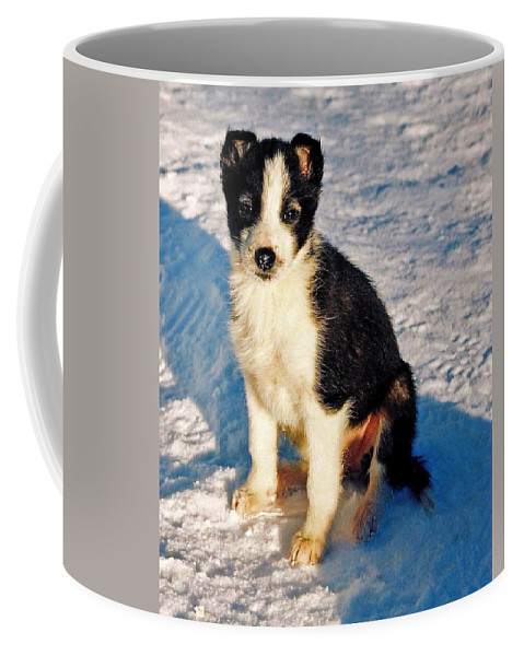 Dog Coffee Mug featuring the photograph My Best Friend by Juergen Weiss