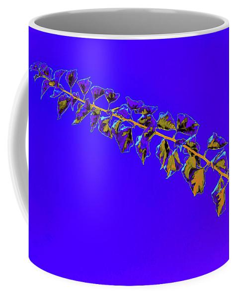 Vine Coffee Mug featuring the photograph My Bougainvillea Aurea 10 by Gary Bartoloni