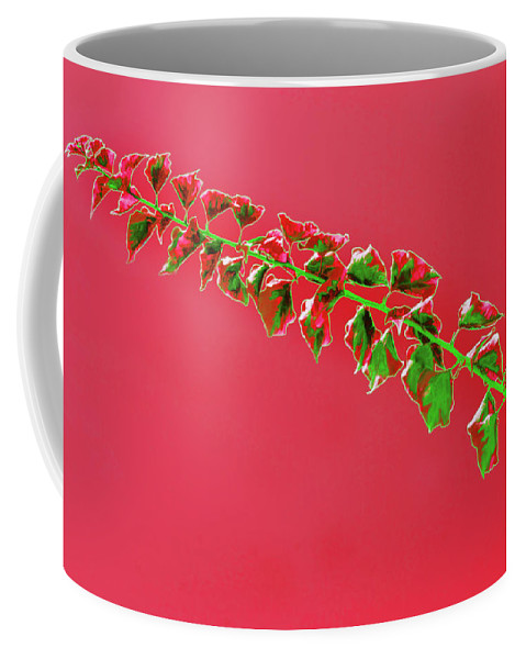 Vine Coffee Mug featuring the photograph My Bougainvillea Aurea 4 by Gary Bartoloni