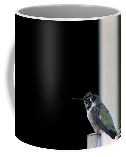 Patzer Coffee Mug featuring the photograph My Friend Stop By by Greg Patzer