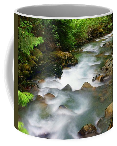 Creek Coffee Mug featuring the photograph Mystic Creek by Marty Koch