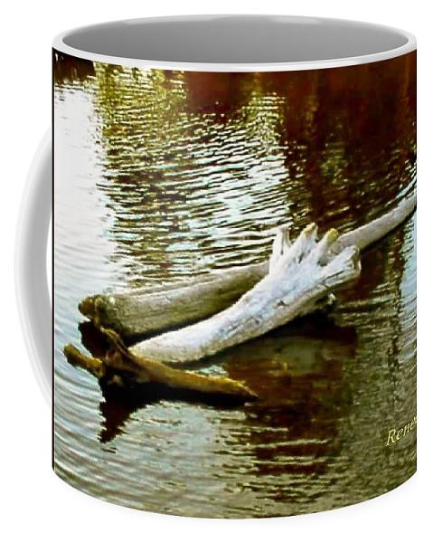 Driftwood Coffee Mug featuring the photograph Nailbiting Driftwood by Sadie Reneau