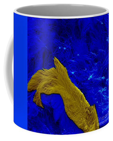Science Coffee Mug featuring the photograph Nanowire Bundles, Nanotechnology by Science Source