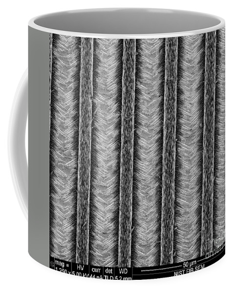 Science Coffee Mug featuring the photograph Nanowires, Nanowalls, Sem by NIST/Science Source