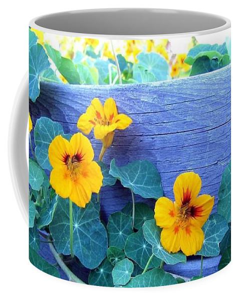 Nasturtiums Coffee Mug featuring the photograph Nasturtium Box by Will Borden