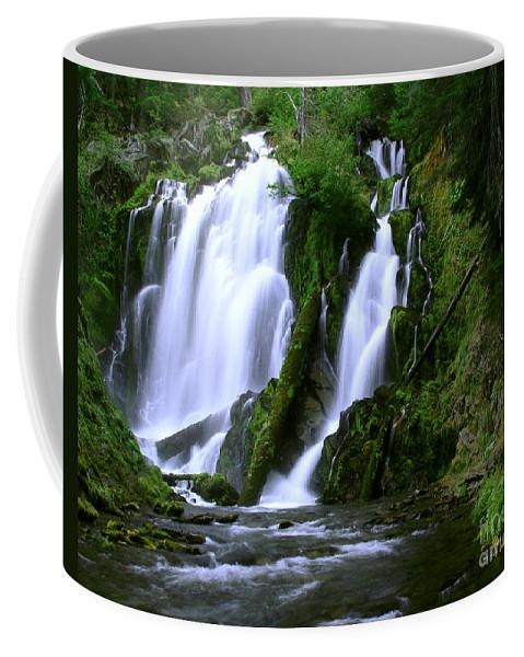 Waterfall Coffee Mug featuring the photograph National Creek Falls 02 by Peter Piatt