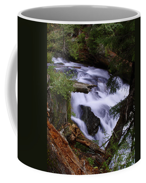 Waterfall Coffee Mug featuring the photograph National Creek Falls 03 by Peter Piatt