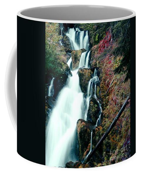 Waterfall Coffee Mug featuring the photograph National Creek Falls 07 by Peter Piatt