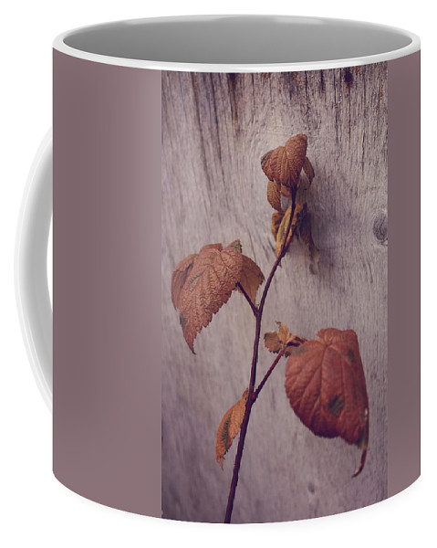 Flowers Coffee Mug featuring the photograph Native Land by The Artist Project