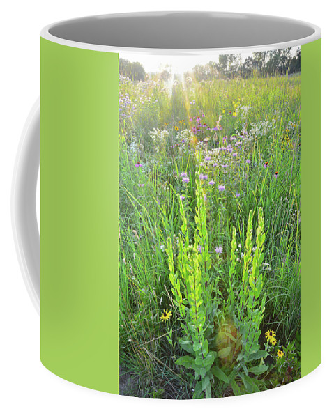 Black Eyed Susan Coffee Mug featuring the photograph Native Prairie In Moraine Hills State Park by Ray Mathis