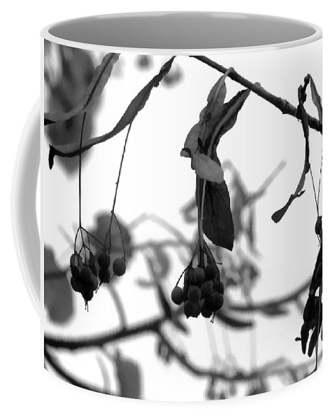 Macro Coffee Mug featuring the photograph Natural Composition II by Lauren Radke