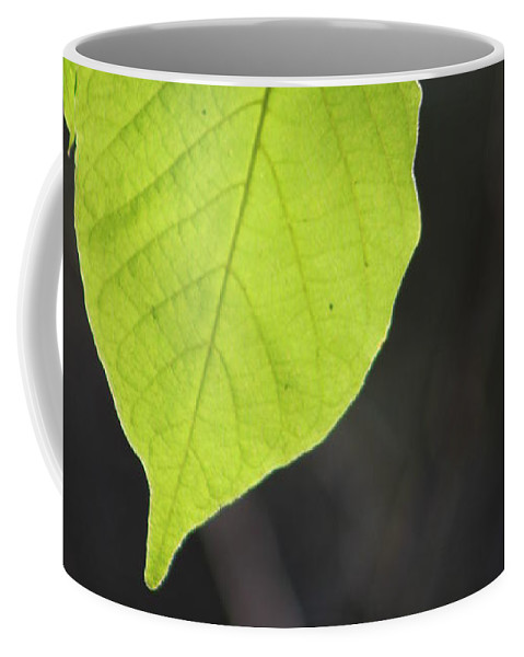 Neon Green Coffee Mug featuring the photograph Natural Neon Green Leaves by Colleen Cornelius