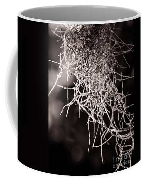 Closeup Coffee Mug featuring the photograph Nature Abstract Black And White by Andrea Anderegg