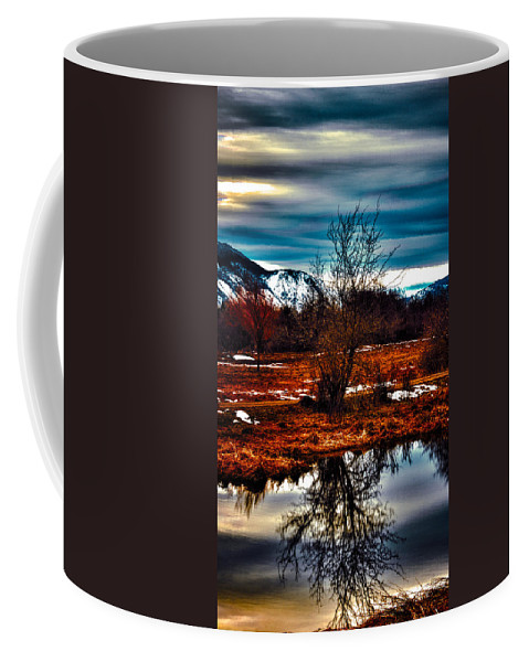 Nature Coffee Mug featuring the photograph Nature Reflects by Josh Smith Photography