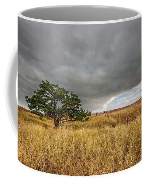 South Dakota Coffee Mug featuring the photograph Nature - Lone Tree In South Dakota Badlands by Southern Plains Photography