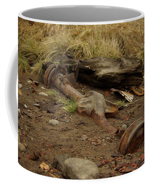 Nature Coffee Mug featuring the photograph Nature Wins by Cindy Johnston