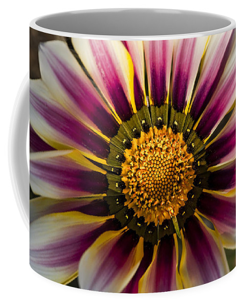 Colorful Coffee Mug featuring the photograph Natures Artwork by Kelley King