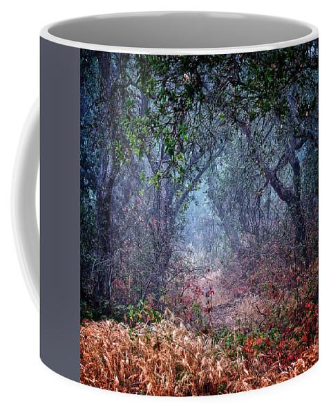 Nature Coffee Mug featuring the photograph Nature's Chaos, Arroyo Grande, California by Zayne Diamond Photographic