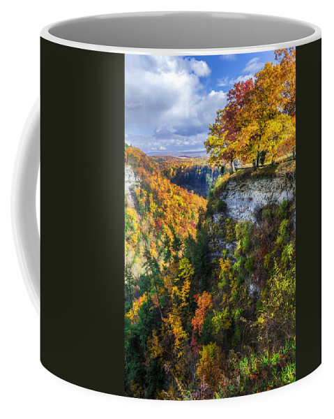 Letchworth State Park Coffee Mug featuring the photograph Natures Colors by Mark Papke
