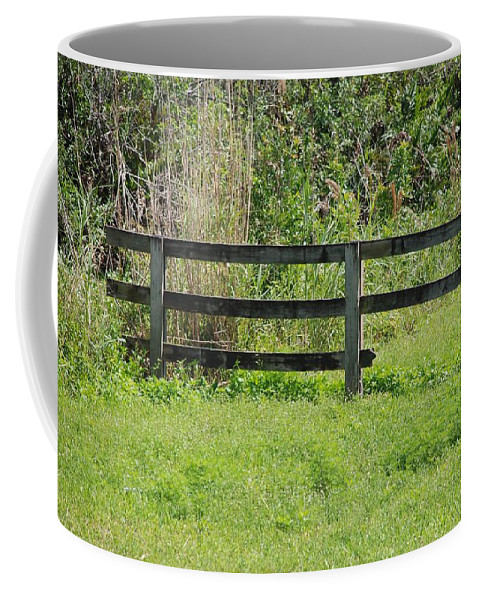 Fence Coffee Mug featuring the photograph Natures Fence by Rob Hans