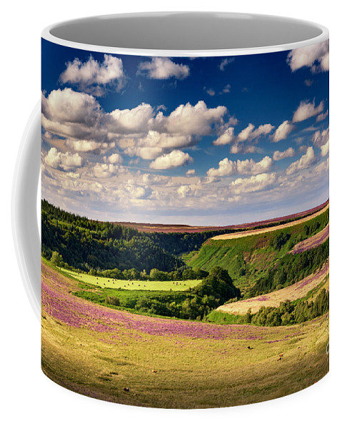 Landscape Coffee Mug featuring the photograph Needle Point From Saltersgate by Richard Burdon