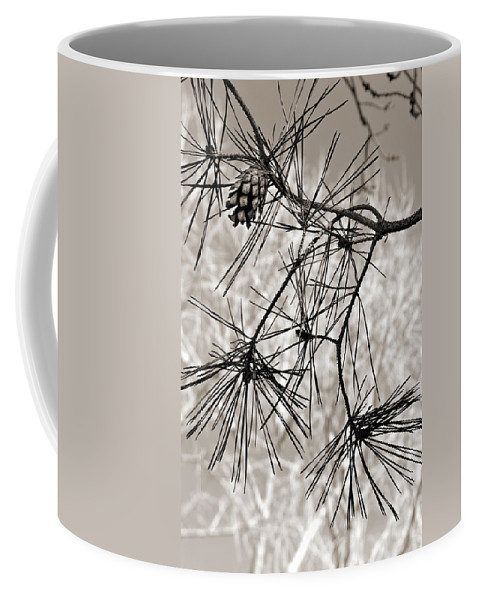 Tree Coffee Mug featuring the photograph Needles Everywhere by Marilyn Hunt