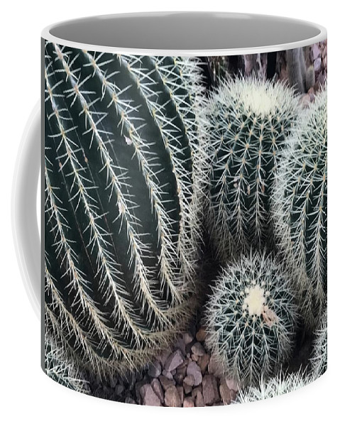 Flowers Coffee Mug featuring the photograph Needles by Jean Wolfrum