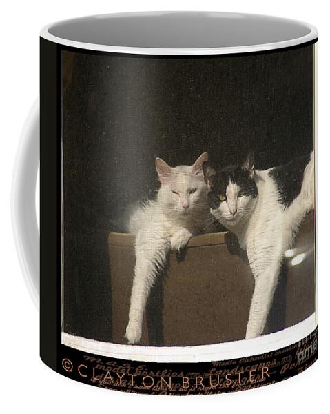 Clay Coffee Mug featuring the photograph Neighborhood Watch by Clayton Bruster