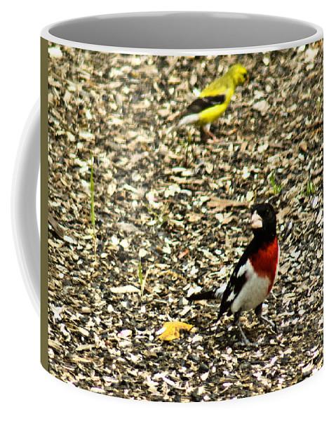 Rose Coffee Mug featuring the photograph Neighbors by Douglas Barnett