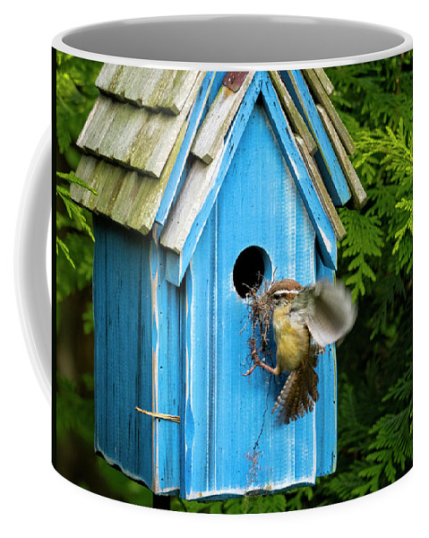 Bird Coffee Mug featuring the photograph Nest Building by David Kay