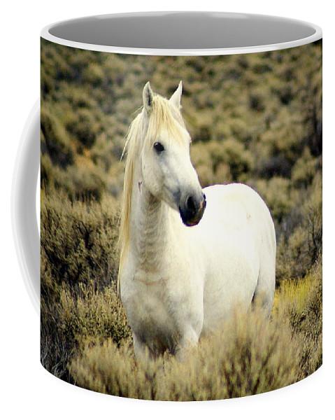 Horses Coffee Mug featuring the photograph Nevada Wild Horses 3 by Marty Koch