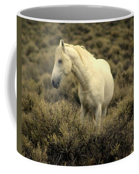 Wild Horses Coffee Mug featuring the photograph Nevada Wild Horses 4 by Marty Koch