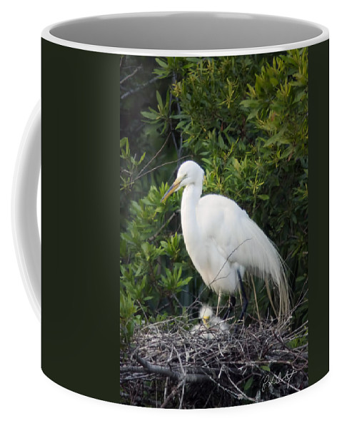 Beaufort County Coffee Mug featuring the photograph New Chick by Phill Doherty