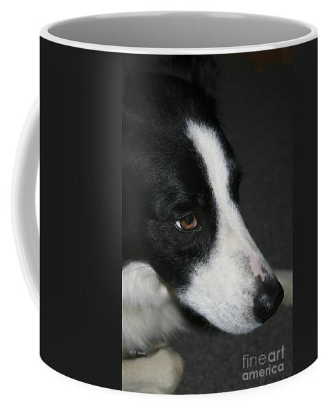 Dog Coffee Mug featuring the photograph New Dog Friend by Deborah Benoit