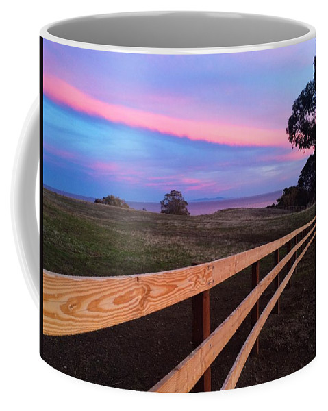 Landscape Coffee Mug featuring the photograph New Fence And New Grass by JoJo Brown