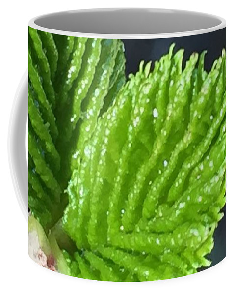 Leaf Coffee Mug featuring the photograph New Leaves by Vonda Drees