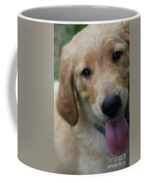 Golden Retreiver Coffee Mug featuring the photograph New Love by Kim Henderson