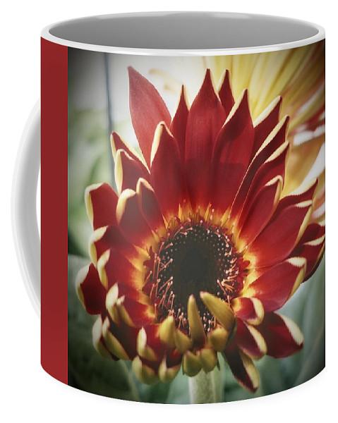 Flower Coffee Mug featuring the photograph Newborn by Ric Steele