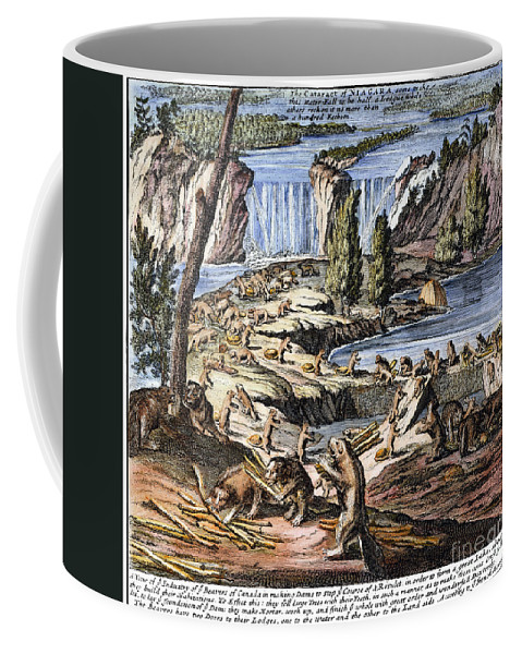1715 Coffee Mug featuring the photograph Niagara Falls: Beavers, 1715 by Granger