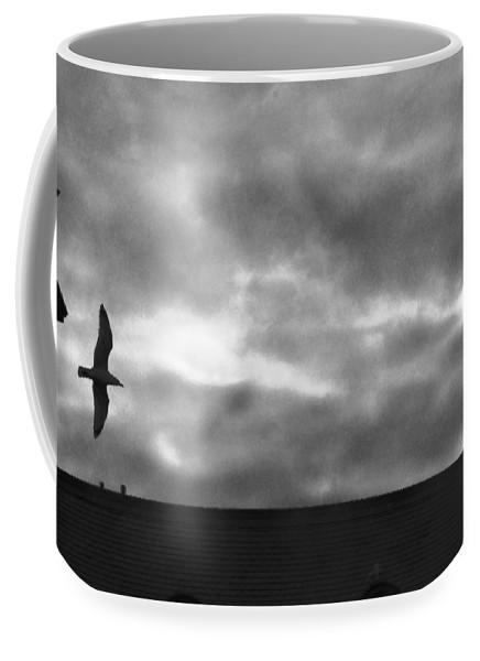 Milwaukee Coffee Mug featuring the photograph Night Flight by Karen Majkrzak
