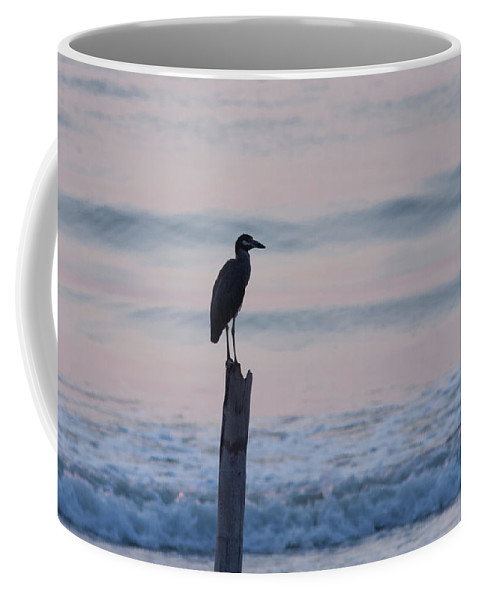 Night Heron Dawn Post Coffee Mug featuring the photograph Night Heron Dawn Post by Paul Rebmann