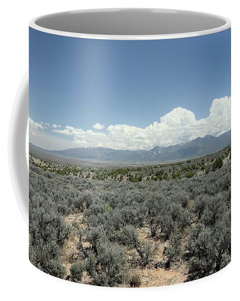 Sage Coffee Mug featuring the photograph New Mexico Landscape 3 by John Wijsman